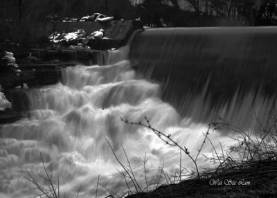 wlam_waterinmotion